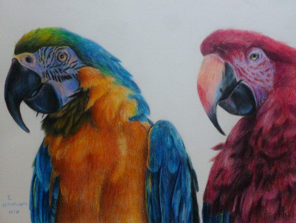 Pencil Art by Taylor Nichczynski
